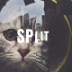 Split Opener - VideoHive Item for Sale