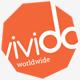 Vivido - One Page WordPress Theme - ThemeForest Item for Sale