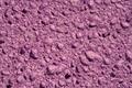 Purple sponge - PhotoDune Item for Sale