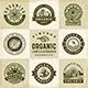 Vintage Organic Labels and Badges Set - GraphicRiver Item for Sale