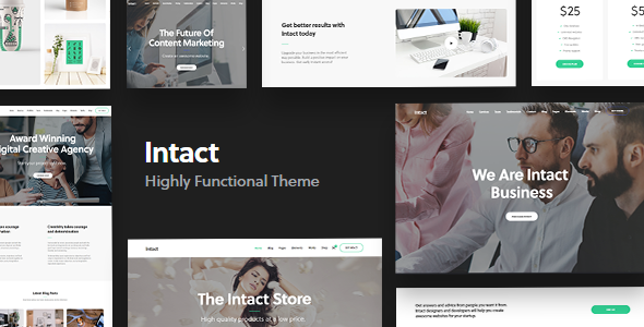 Intact – Premium Multi-Purpose WordPress Theme Free Download
