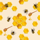 Background with Bees - GraphicRiver Item for Sale