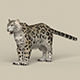 Game Ready Snow Leopard - 3DOcean Item for Sale