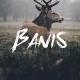 Banis Font - GraphicRiver Item for Sale