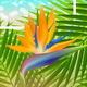Summer Holidays Vector Illustration - GraphicRiver Item for Sale