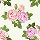 Pale Pink And Beige Roses Vector Seamless Pattern - GraphicRiver Item for Sale