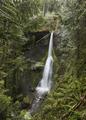 Marymere Falls in Olympic National Park Washington - PhotoDune Item for Sale