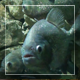 Piranhas - VideoHive Item for Sale