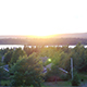 Aerial village near river sunset - VideoHive Item for Sale