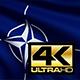 Nato Flag 4K - VideoHive Item for Sale