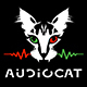 Epic Orchestral Motivation - AudioJungle Item for Sale