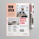 Workspace Flyer - GraphicRiver Item for Sale