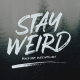 Stay Weird - Brush Font + Swashes - GraphicRiver Item for Sale