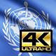 World Health Organization Flag 4K - VideoHive Item for Sale