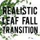 Realistic Leaf Fall Transition - VideoHive Item for Sale