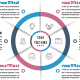 Business Circle Infographics with 06 Steps - GraphicRiver Item for Sale