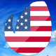 Flag Day Logo - VideoHive Item for Sale