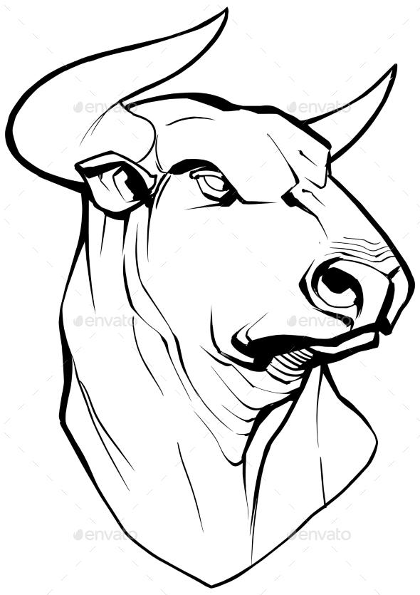 Bull on White