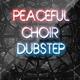 Peaceful Slow Rock Dubstep - AudioJungle Item for Sale