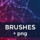 Plexus & Network Brushes - GraphicRiver Item for Sale