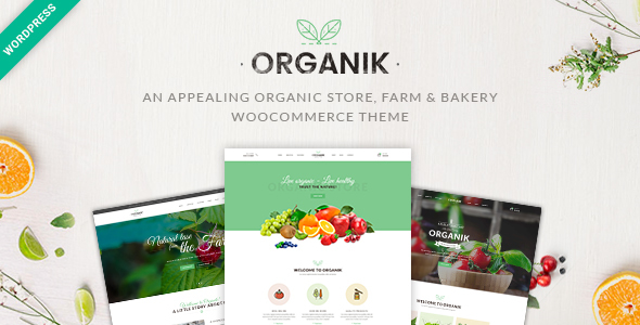 Organik - Organic Food Store WordPress Theme