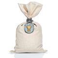 Money bag with padlock - PhotoDune Item for Sale