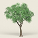 Game Ready Forest Tree 18 - 3DOcean Item for Sale