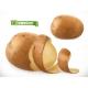 Potato Peelings - GraphicRiver Item for Sale