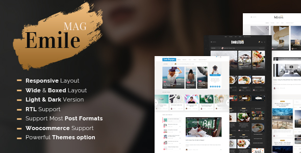 Emile - Responsive WordPress Blog Theme With Shop