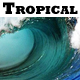 Tropically Uplifting Summer - AudioJungle Item for Sale