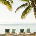 Tropical Beach Deckchairs - PhotoDune Item for Sale