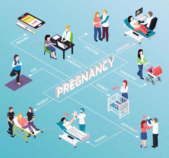 Pregnancy Isometric Flowchart