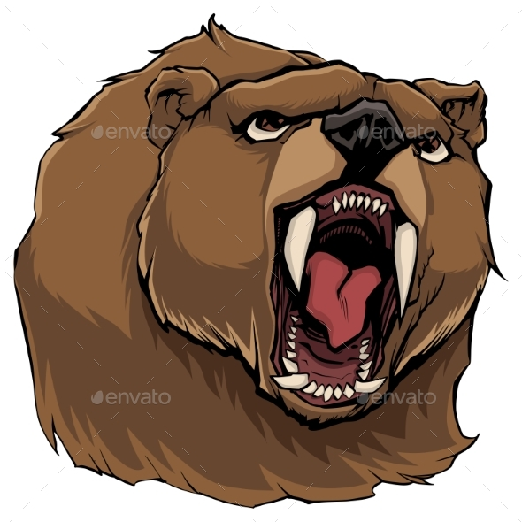 Angry Bear on White