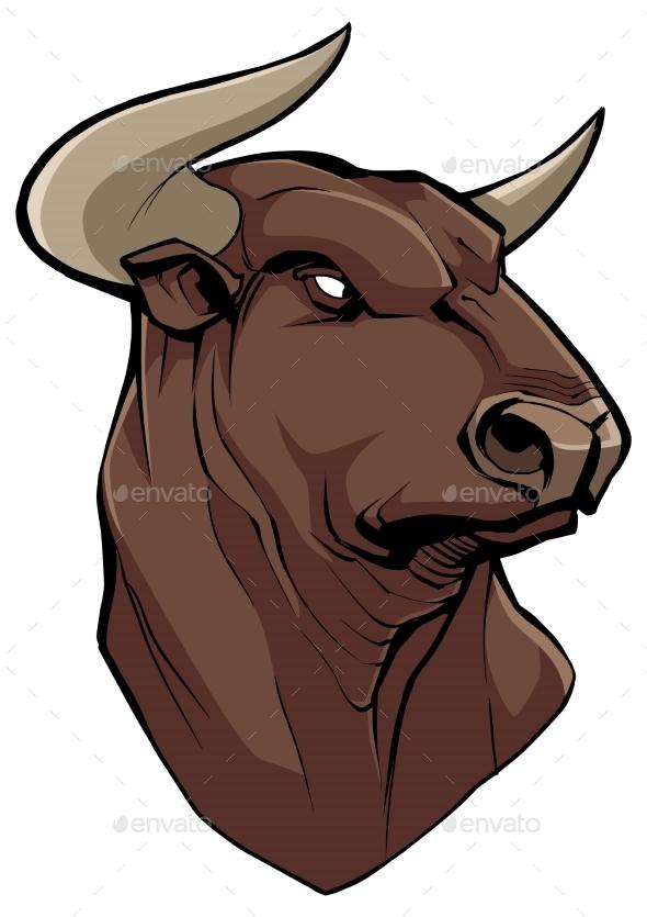Bull Head on White
