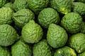Fresh kaffir limes, bergamot fruit for herbal products - PhotoDune Item for Sale