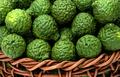 Citrus hystrix, bergamot fruit for herbal medicine - PhotoDune Item for Sale