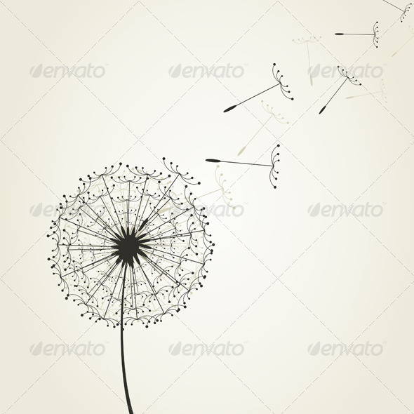 Dandelion Graphics Designs Templates From Graphicriver
