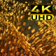 Gold II - VideoHive Item for Sale