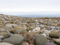 Large rocks on beach close-up perspective - PhotoDune Item for Sale