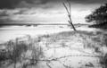 Australia Beach Sunrise Black and White - PhotoDune Item for Sale