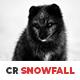 10 CR Snowfall Lightroom Presets - GraphicRiver Item for Sale