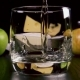 Strong Alcoholic Drink Pour Into a Glass Near the Snack - VideoHive Item for Sale