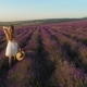 Beautiful Girl in a White Dress with a Straw Hat in Her Hands Walking on a Field of Lavender - VideoHive Item for Sale