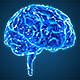 Blue Brains 2 - VideoHive Item for Sale