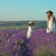 Elder and Younger Sisters in Dresses Running on a Blossoming Lavender Field - VideoHive Item for Sale