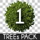 Top View Trees Pack 1 - GraphicRiver Item for Sale