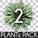 Top View Plants Pack 2 - GraphicRiver Item for Sale