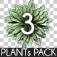 Top View Plants Pack 3 - GraphicRiver Item for Sale