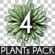 Top View Plants Pack 4 - GraphicRiver Item for Sale