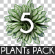 Top View Plants Pack 5 - GraphicRiver Item for Sale